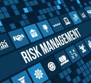 Menadžment rizikom u IT sektoru
